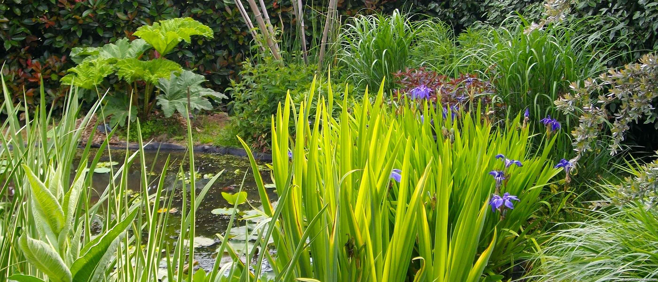 P pini re cologique et jardin visiter morbihan le for Jardin a visiter