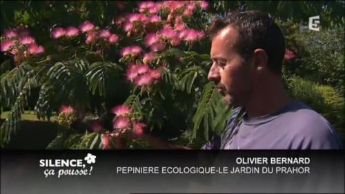 France 5 Silence ça Pousse